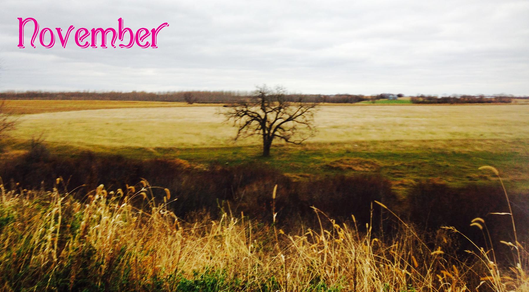 November5_2014